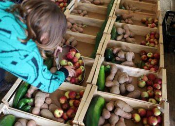 fruta-feia-cabaz-semanal