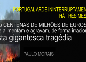 portugalarde3meses